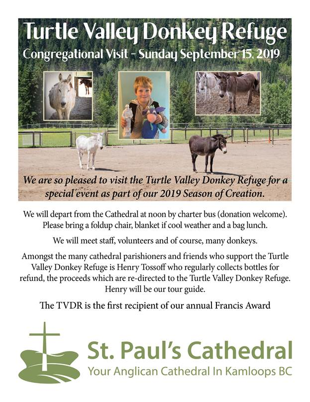 Join us for the turtle valley donkey refuge visit Sunday September 15 2019. Departing cathedral at noon by charter bus (donation welcome). Please bring fold up chair, a blanket and bag lunch.